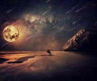 Dziki przygoda blask księżyca obraz stock