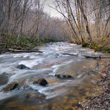 Dziki rzeka krajobraz w wiośnie Zdjęcia Royalty Free