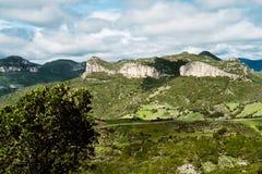 Dziki Sardinia Zdjęcia Royalty Free