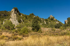 Dziki Sardinia Fotografia Stock