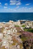 Dziki skalisty wybrzeże w vertical krajobrazie zdjęcia royalty free