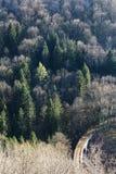 Dziki wiadukt zdjęcie royalty free