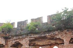 Dziki wielki mur obraz stock