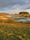 Dziki wiosna krajobraz Obrazy Royalty Free