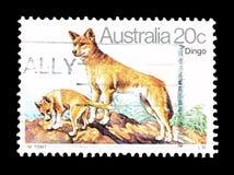 Dziki ?ycie na znaczkach pocztowych zdjęcia royalty free