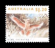Dziki ?ycie na znaczkach pocztowych obraz stock