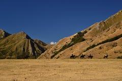Dziki zachodu krajobraz, jeźdzowie na koniach, suche góry, sawanny, pustyni ziemia obraz stock
