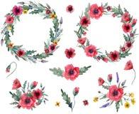 Dzikich kwiatów wianek royalty ilustracja