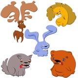 dzikich zwierząt Obraz Royalty Free