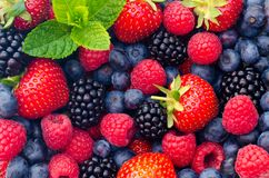Dzikie jagod truskawki, czarne jagody, czernicy, malinki - zbliżenie fotografia Obrazy Stock