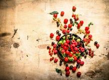 Dzikie jagody w starym talerzu głębii pola płycizny stół drewniany Zdjęcia Royalty Free