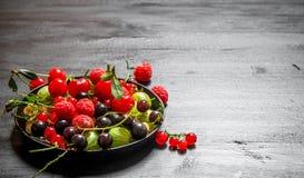 Dzikie jagody w starym talerzu kurczak na czarnym drewnianym tle Obraz Royalty Free