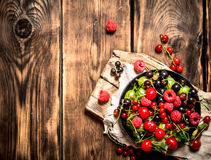 Dzikie jagody w starym talerzu na desce Fotografia Royalty Free