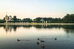 Dzikie kaczki na pałac stawie w nieruchomości Kuskovo, Moskwa Zdjęcia Stock