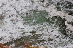 dzikie mórz Zdjęcie Stock