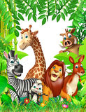 dzikie zwierzę Zdjęcie Royalty Free