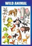dzikie zwierzę mapa Fotografia Stock