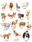 dzikie zwierzę mapa Zdjęcia Stock