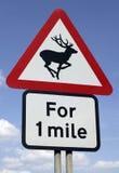 Dzikie zwierzę ostrzega drogowego ruchu drogowego znaka Zdjęcia Stock