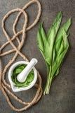 Dzikiego czosnku liście z białą arkaną na popielatym kamiennym tle i moździerzem, zdrowy styl życia, sezonowy wiosny ziele dla ku Fotografia Royalty Free