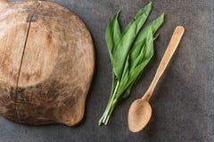 Dzikiego czosnku liście z drewnianym pucharem i łyżką na popielatym kamiennym tle, zdrowy styl życia, sezonowy wiosny ziele dla k Obrazy Stock