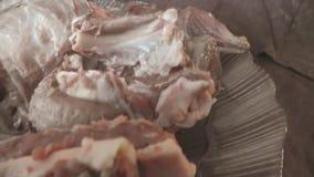 Dzikiego knura mięso wiruje na talerzu surowego mięso zbiory