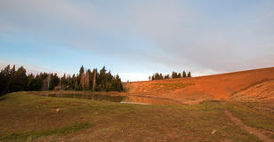 Dzikiego konia podlewania dziura na Sykes grani w Pryor gór Dzikiego konia pasmie na Montana Wyoming granicie stanu Zdjęcie Stock