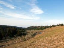 Dzikiego konia podlewania dziura w Przegranym Wodnym jarze w Pryor gór Dzikiego konia pasmie na Montana Wyoming granicie stanu Zdjęcie Stock
