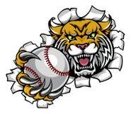 Dzikiego mienie baseballa łamania Balowy tło royalty ilustracja