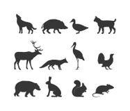 Dzikiego zwierzęcia dzikiego zwierzęcia i sylwetki czarni symbole Zdjęcia Stock