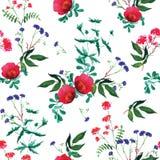 Dzikiej różanej akwareli bezszwowy wektorowy druk Obrazy Royalty Free