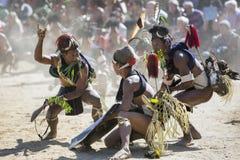 Dzioborożec festiwal Nagaland, India Zdjęcia Royalty Free