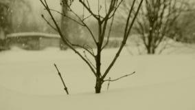 Dzisiaj pójść nieoczekiwanie opad śniegu zbiory wideo