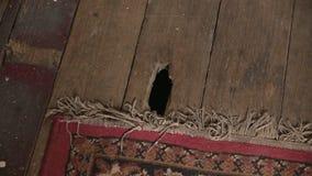 Dziura na podłoga strzale zbiory
