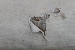 Dziura na ubraniach Obraz Royalty Free