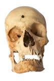 dziura po kuli istoty ludzkiej czaszka obraz stock