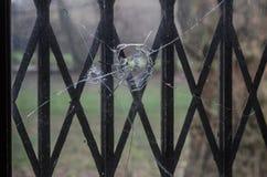 dziura po kuli w windowpane Obrazy Stock