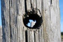 Dziura w drewnianym słupie fotografia royalty free