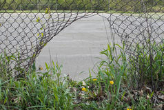 Dziura w ogrodzeniu. Obrazy Royalty Free