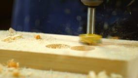 dziury wiertniczy drewno zdjęcie wideo