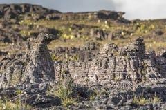 Dziwaczne antyczne skały plateau Roraima tepui - Wenezuela, Zdjęcie Stock
