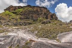 Dziwaczne antyczne skały plateau Roraima tepui - Wenezuela, Obraz Royalty Free