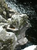 Dziwaczne rockowe formacje, Randolphs skok, Findhorn rzeka, Szkocja, UK Obraz Royalty Free