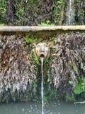 Dziwny Fontaine w Rzym zdjęcia stock
