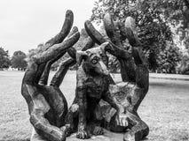 Dzok la statue de chien à Cracovie images stock