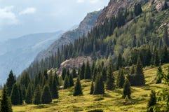 Dzungarian Alatau berg, Kasakhstan Arkivfoton