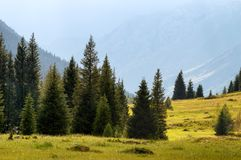 Dzungarian Alatau mountains, Kazakhstan Royalty Free Stock Photography