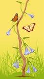 dzwonów kwiatów pocztówkowy badyl drewniany Fotografia Stock