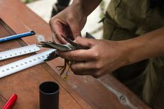 Dzwonić i pomiarowi ptaki obrazy royalty free