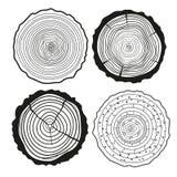 dzwoni drzewa Set przekrój poprzeczny ilustracji